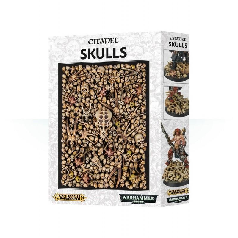 Skulls Citadel
