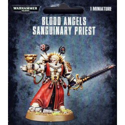 Sanguinary Priest - Blood Angels