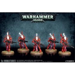 Wraithguard Squad - Craftworlds