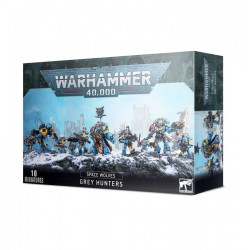 Pack - Space Wolves Chasseurs Gris